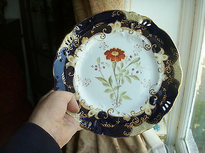 Old Hand Painted Antique English Botanical Plate 1830 Coalport ? Derby ? Floral