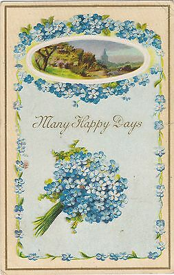 Embossed Floral Forget-me-Knots Church. West New Annan, NS. Circa 1910 Postcard