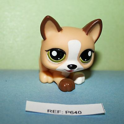 PETSHOP - Chiot - Littlest Pet Shop -  LPS (ref:640)