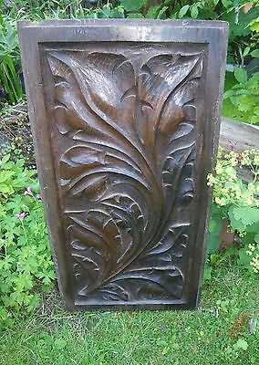 Antique 19Th Century Large Decoartive Oak Hand Carved Acanthus Leaf Panel