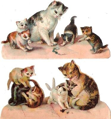 Oblaten Glanzbild scrap die cut Katze  12cm cat kitten