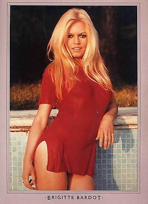 Brigitte Bardot Poster . Film Movie Actress. A Very Private Affair .not Dvd