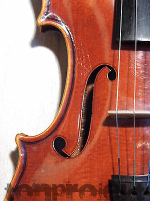 vintage STRADIVARIUS VIOLIN 4/4 quality fiddle violon 小提琴 Geige バイオリン Germany