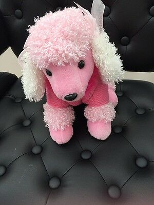 Gorgeous Pink Poodle In Pink Jumper