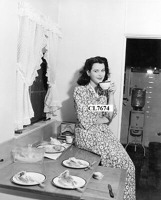 Hedy Lamarr in the Kitchen of Her Home Photo