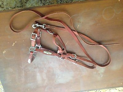 leather Horse halter And Lead