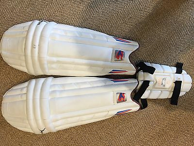Puma Pulse 3000 youth cricket pads