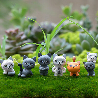 Angry Cat MINI Garden Small Statue Micro Landscape Cute Decoration Crafts