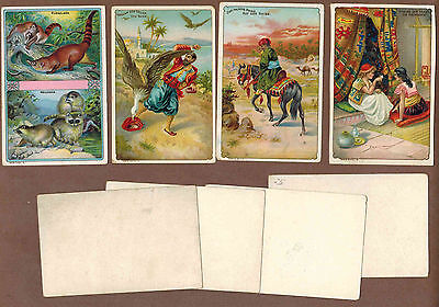 TYPE CARDS: Collection of RARE Victorian Trade Cards from GERMANY (1900)d