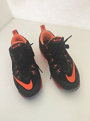 Lebron James youth basketball shoes. Earned 23 4Y