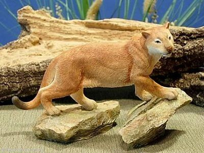 Florida Panther by Country Artists #4874