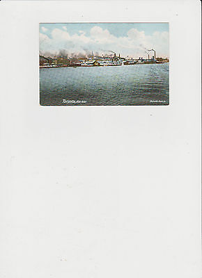 Circa 1900 Toronto Harbour with Steamships Vintage Post Card