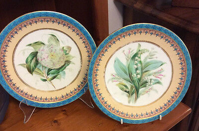 Royal Worcester Plates Circa 1850,s. Blue,gilded Floral Design.