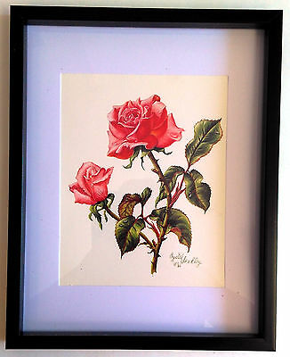 """Framed RED ROSES 8""""x10"""" Art Print Wall Hanging Home Decor"""