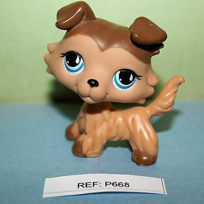 PETSHOP - Colley  # 893 - Littlest Pet Shop -  LPS (ref:668)