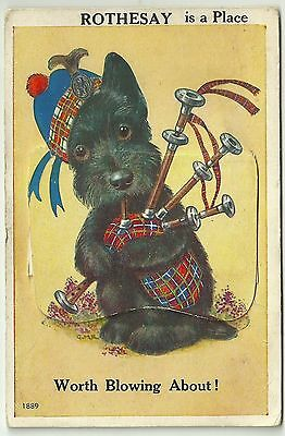Novelty Pullout postcard Comic Art Scottie Dogs Bagpipes Rothesay