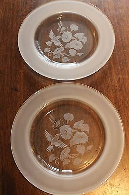 2 glass plates with humming birds