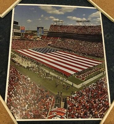 "NFL Tampa Bay Buccaneers 8"" X 10"" Raymond James Stadium USA Flag Photo Picture"