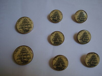 Scrimshaw buttons,8 for suit jacket
