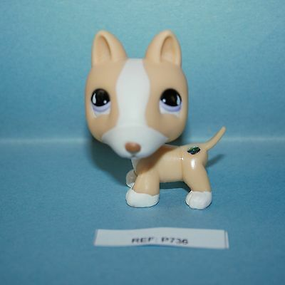 PETSHOP - Chien Bull terrier - Littlest Pet Shop -  LPS (ref:736)