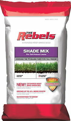 Rebel Tall Fescue Shade Mix Grass Seed - 3 Lbs.