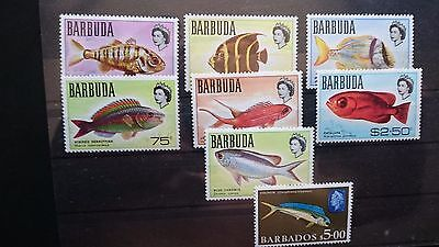 Barbuda+Barbados 1968 lot LUXE