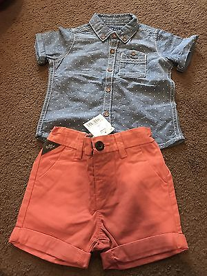 Boys Next 6-9 Month Shirt And Shorts