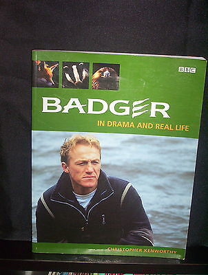 Badger: In Drama and Real Life - Christopher Kenworthy (Paperback)