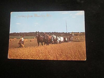 Greetings From Mauston   Wisconsin  Postcard