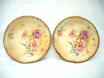 S Fielding & Co - Pair of Royal Sussex Plates 'Peony' Design 1891 - 1913 - Rare
