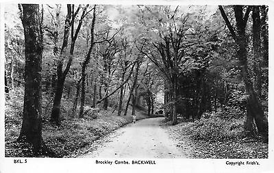 POSTCARD    SOMERSET   BACKWELL   Brockley  Combe