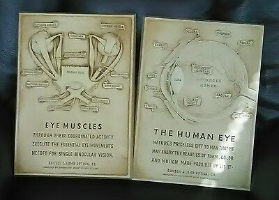 2 Bausch Lomb  optical anatomy 3D engraved  plaques -  HUMAN EYE  & EYE MUSCLES