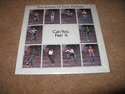 The Voices of East Harlem Can You Feel It vinyl LP