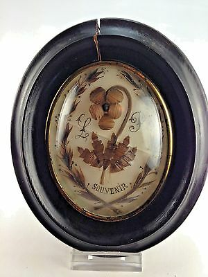 Antique French Rare Souvenir LP  Hair Mourning  Art in Oval  Wood Frame 1880's