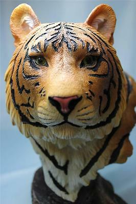 Tiger Bust Statue Cat Orange Bengal Tiger Statue Figurine Sculpture New