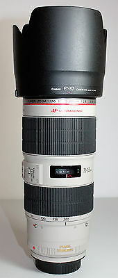 Canon EF 70-200mm f/2.8L IS II USM Lens - #713a