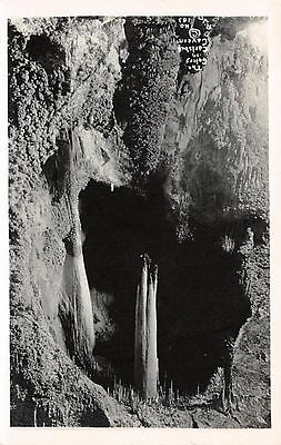 NEW MEXICO - The Celery in Carlsbad Cavern c.1925 Leck Real Photo POSTCARD