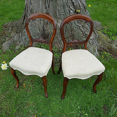 2 Antique BALLOON BACK Victorian Parlor Chairs 19th C. - See Delivery Options