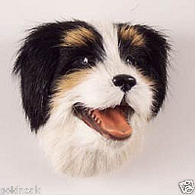 (1) Bernese Mountain Dog Magnet! Support Our Unwanted Pets Program!