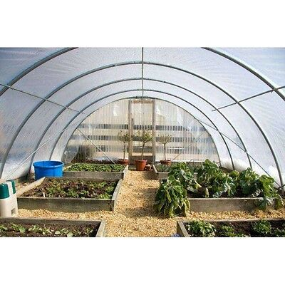 4 Year 6 Mil Clear Plastic Greenhouse Poly Film 24 ft. Wide - *VARIOUS LENGTHS*