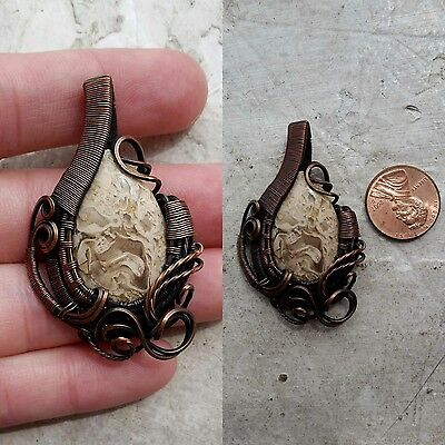 petrified palm wood pendant wire wrapped in copper wire