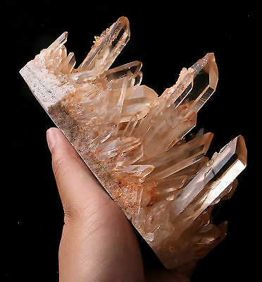 1285g Natural Clear Skin Quartz Point Crystal Cluster Healing Mineral Specimen