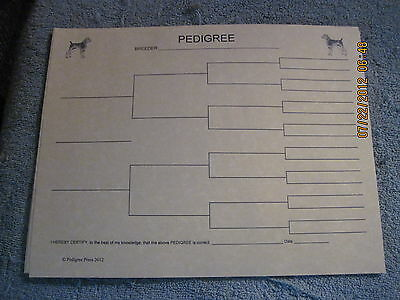German Shorthair Pointer Blank Pedigree Sheets Pack 10 FREE SHIPPING IN USA dog