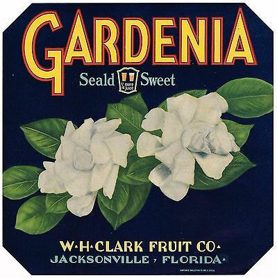 Florida Orange Crate Label Gardenia Jacksonville Floral Wh Clark Original C1930