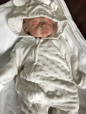 Life Like New Reborn Baby, All New Clothes, 4lb weigh Ideal Christmas gift