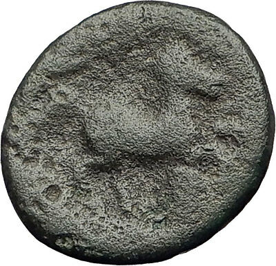 PELLA in MACEDONIA 148BC RARE R1 Authentic Ancient Greek Coin ZEUS & BULL i62606