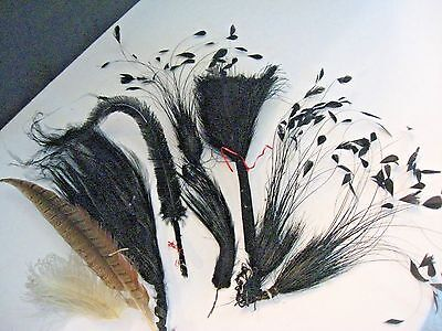 Lot Antique Victorian Edwardian Black Hat feather feathers Millinery hat Lot