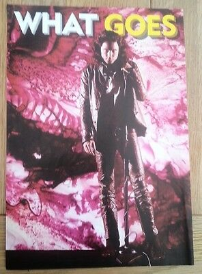 JIM MORRISON (DOORS) 'in leather' magazine PHOTO/Poster/clipping 11x8 inches