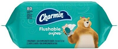 Incredible Charmin Toilet Seat Covers 5 Count Plus Charmin To Go Onthecornerstone Fun Painted Chair Ideas Images Onthecornerstoneorg