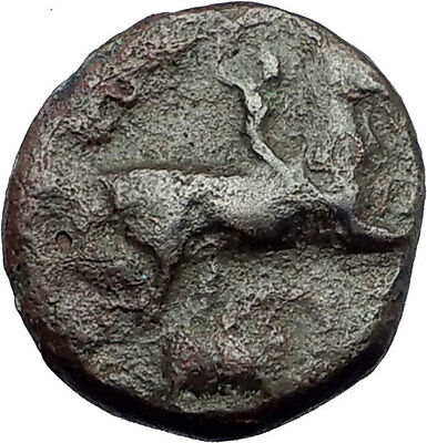 KASSANDER killer of Alexander the Great's FAMILY Ancient Greek Coin Horse i62774